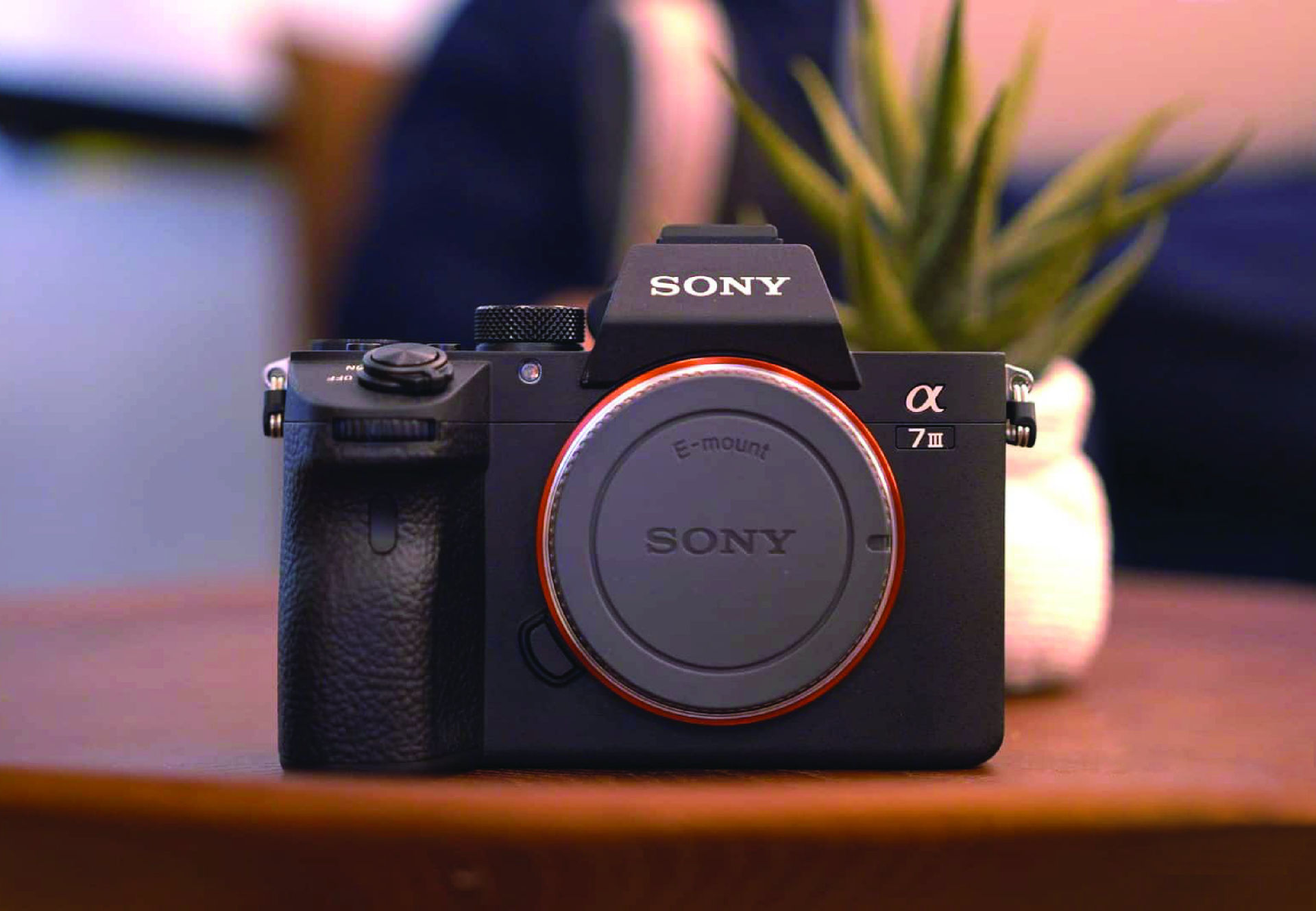 Picture for category Mirrorless Cameras